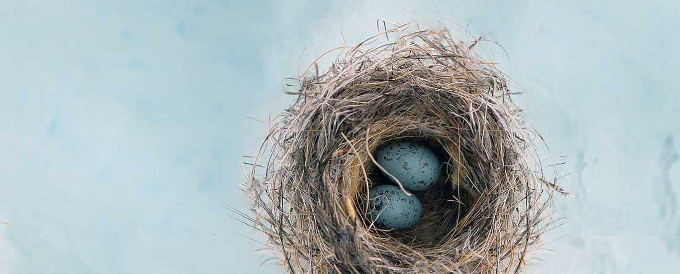 mindfulness clinic gerry cunningham nest egg cognitive training meditation