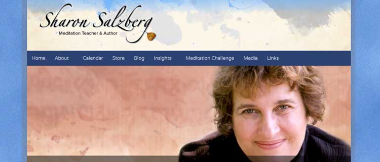 sharon salzberg mindfulness clinic dublin gerry cunningham website