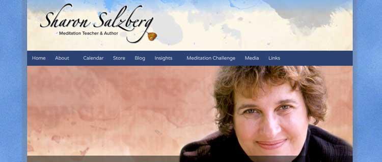 sharon salzberg mindfulness clinic dublin gerry cunningham website