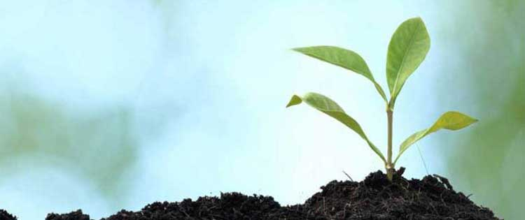 mindfulness diploma course dublin ireland